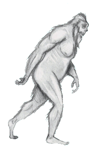 bigfoot drawing